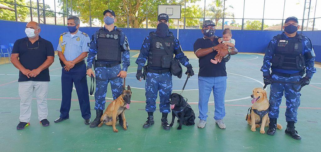 As cadelas adestradas Índia, Xitara e Charlote, do Grupamento de Ações Táticas com Cães, realizaram o o show dog